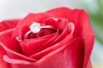 ring-i-rose